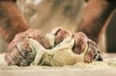 Factores que influyen en el amasado (2º Parte)