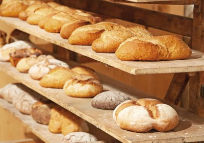 portada-panorama-panadero-14b