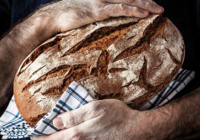 portada-panorama-panadero-17a