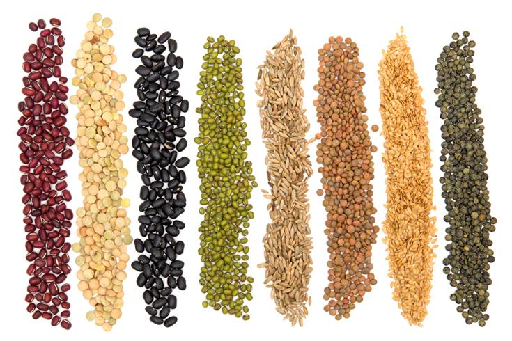 La importancia de los cereales. Granos en panificación