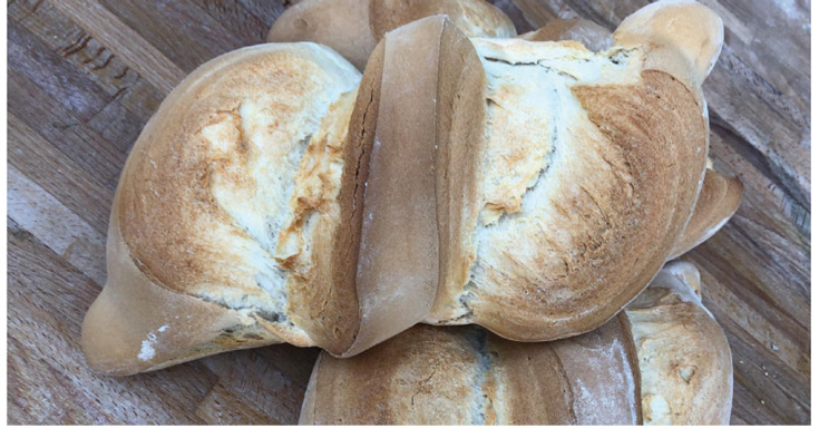 La Telera, pan cordobés