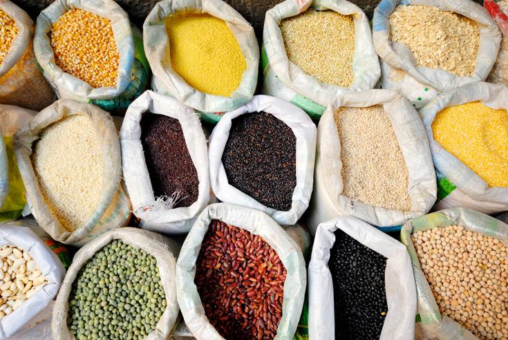 La produccion española de cereales en 2018