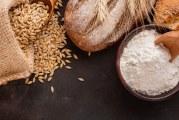 ¿Cómo caracterizo la harina de trigo?