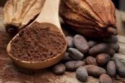 El cacao natural, un aliado muy saludable  en tiempos de confinamiento