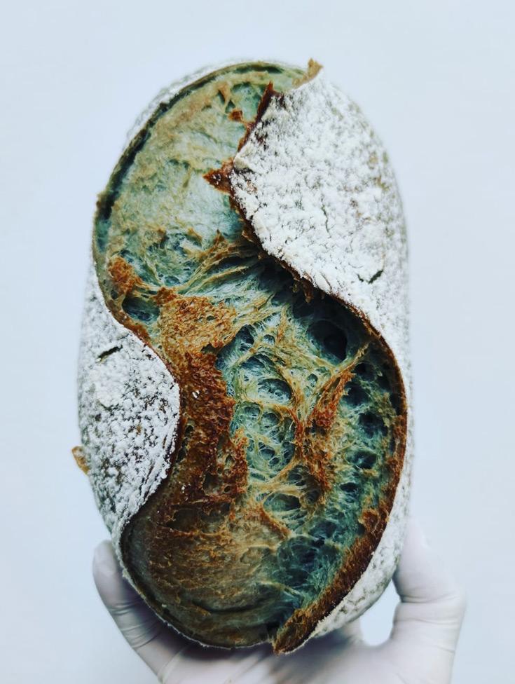 Chaouen Bread