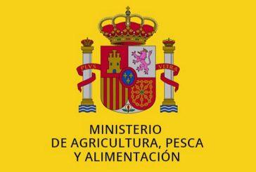 El Ministerio de Agricultura agradece el esfuerzo hecho por la industria de pan y la bollería durante el estado de alarma