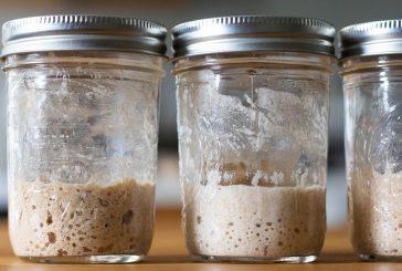 El fermento natural paso a paso