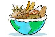 16 de octubre, Día Mundial del Pan