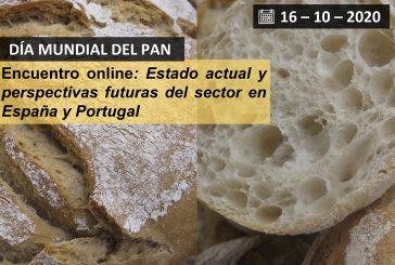 Encuentro online: Estado actual y perspectivas futuras del sector en España y Portugal