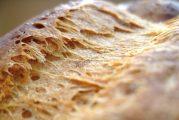 Descubre las características de una buena corteza en el pan