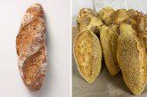 Descubre Kornmix  y Maize Mix de la mano de Ramón Cusiné Hill