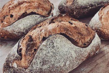 Cítricos en un obrador de pan